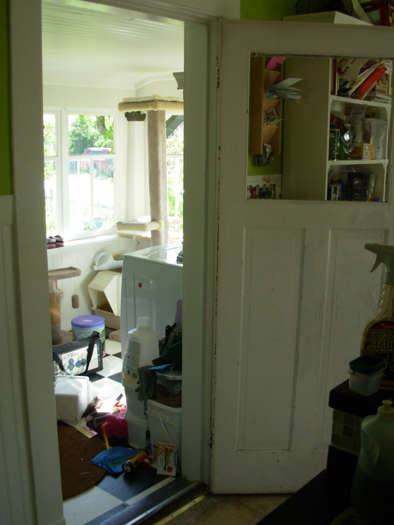 The sun heats up the sunroom and, if we open the back door, the kitchen too.