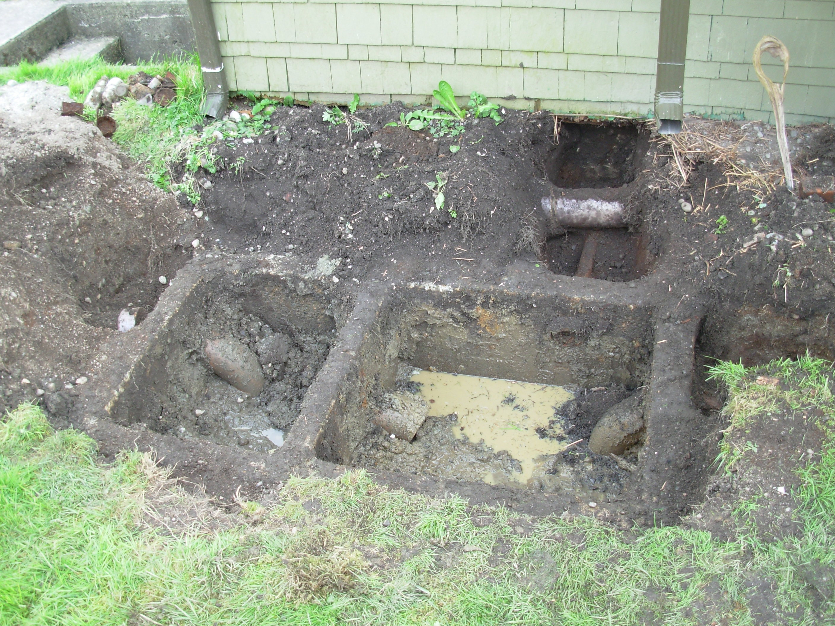 Surprise septic tank hammond forever house for 1 bathroom septic tank